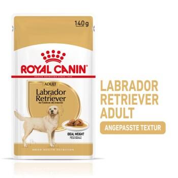 Labrador Retriever Adul Stückchen in Soße 10x140g