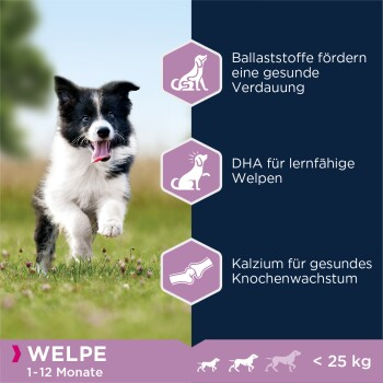 Puppy Small & Medium Breed Lamm & Reis 12kg 12kg