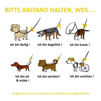Anhänger Yellow Dog