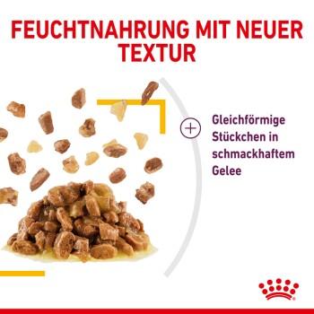 SENSORY Taste in Gelee für wählerische Katzen 12x85g