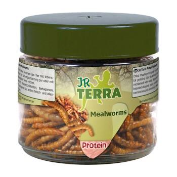 JR Terra Protein Mealworms 20g