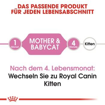 Mother & Babycat 2kg