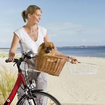 Tier-Fahrradkorb Weide