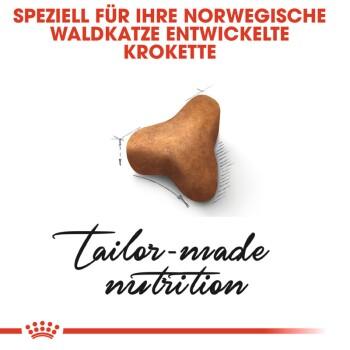 Norwegian Forest Adult 2kg