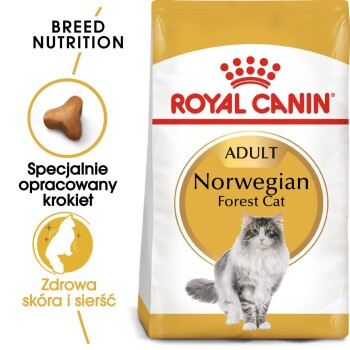 Norwegian Forest Adult 2 kg