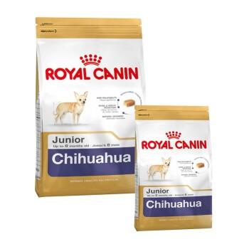 Chihuahua Junior 1,5kg + 500g gratis