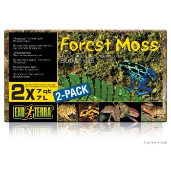 Moos 2er Pack