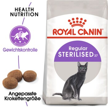 Sterilised 37 400g + Catnip Maus
