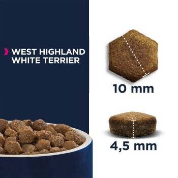 Breed Specific West Highland White Terrier 2,5kg