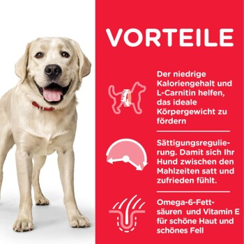 Canine Adult Light Large Breed 14kg