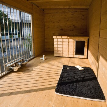 Hundezwinger Balu mit Hundehütte ohne Bodenplatte ca. 3x2x2,15m