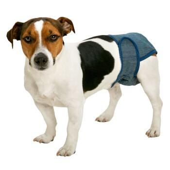 Hundeschutzhose Lady Pants XXS