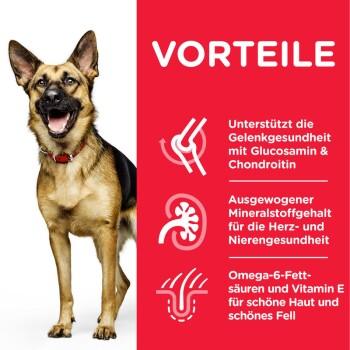 Canine Active Longevity Mature Adult 6+ Senior Large Breed 14kg