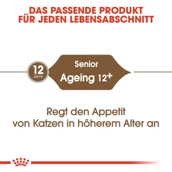 Ageing 12+ 2kg