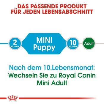 Mini Puppy 8kg