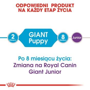 Giant Puppy 15kg