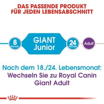 Giant Junior 15kg + 3kg gratis