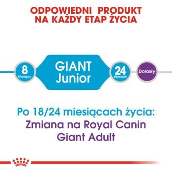 Giant Junior 15kg