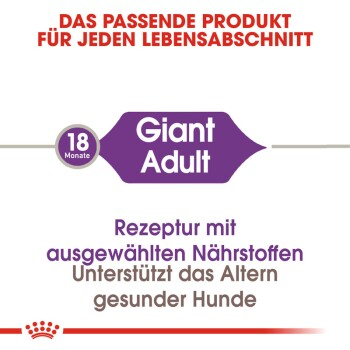 Giant Adult 2x15kg