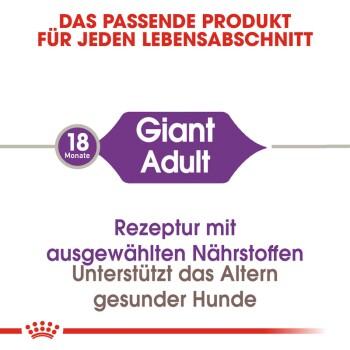 Giant Adult 4kg