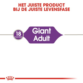 Giant Adult 2 x 15kg