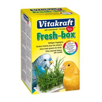 Fresh-box Vogelgrün für Sittiche und Kanarien