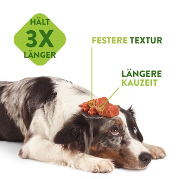 Zahnpflegesnacks Stix Klein - 24+4 Stück
