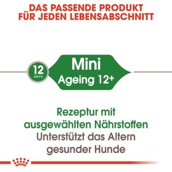 Mini Ageing 12+ 12x85g