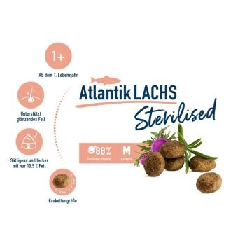 Sterilised Adult Atlantik Lachs 1,3kg